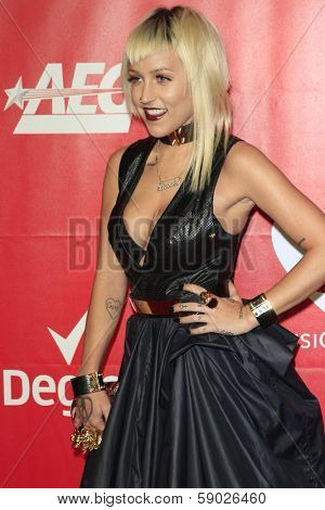 LOS ANGELES - JAN 24:  Brooke Candy at the 2014 MusiCares Person of the Year Gala in honor of Carole King at Los Angeles Convention Center on January 24, 2014 in Los Angeles, CA