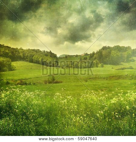 Summer landscape with vintage color filters