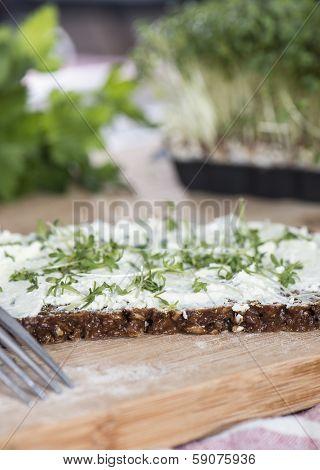 Cream Cheese And Garden Cress