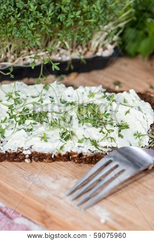 Cream Cheese With Garden Cress