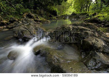 Pi'ina'au stream in the Ke'anae Arboretum, Maui, Hawaii