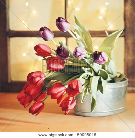 tulips on a wooden board in front of a window pane with bokeh sh