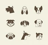 pic of poop  - Pets vector icons  - JPG