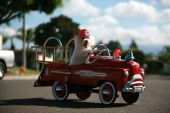 pic of pedal  - Fifi the World Famous Bichon Frise Dog races the scene of a cat caught in a tree in her fire truck pedal car - JPG