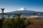 Mt Fuji View From The Lake