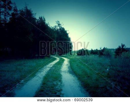 Retro Forest Road