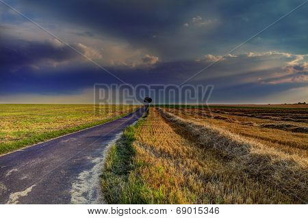 Road Into The Distance