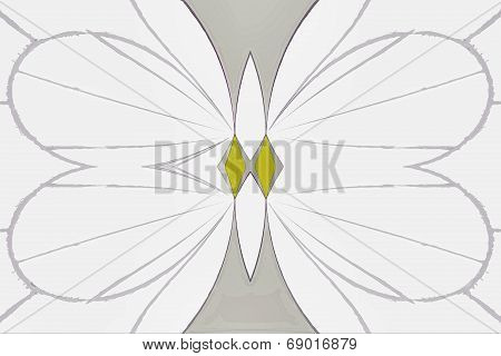 Butterfuly Abstract