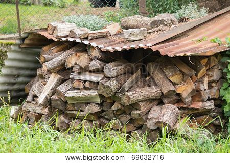 a wood in the woodshed in the mountain