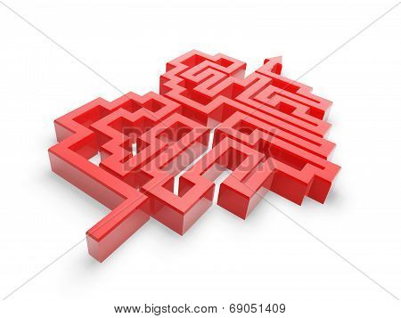 Red Heart Maze Path