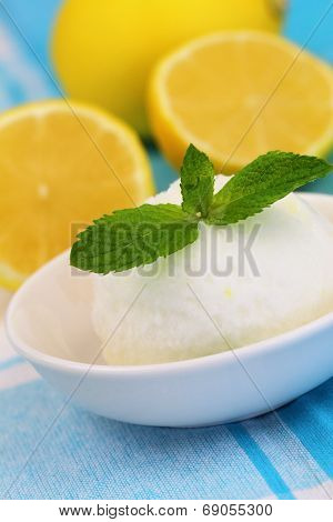 Lemon sorbet garnished with mint leaf