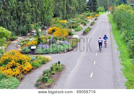 Bicyclists on a trail