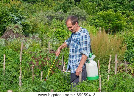 Gardener With Sprinkler