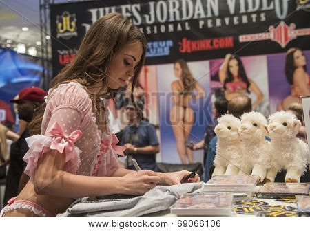 Avn Adult Entertainment Expo