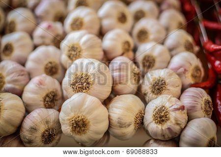 Strings Of Garlic Bulbs