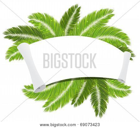 Palm Branches And Paper Scroll