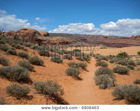 Stunning Corona Arch Trail, Moab