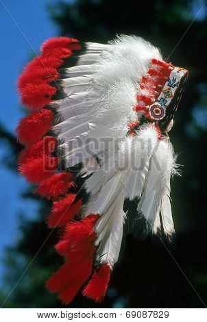 Native American Feathered War Bonnet