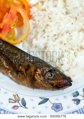 Fried Fish Meal