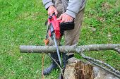 stock photo of man chainsaw  - Old worker using electric chainsaw cutting beech branch preparing firewood for winter - JPG