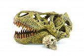 picture of dinosaur skeleton  - Human Skull And dinosaurs T - JPG