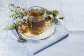 pic of infusion  - Mentha pulegium infusion and items to prepare it - JPG