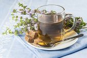 foto of infusion  - Mentha pulegium infusion and items to prepare it - JPG