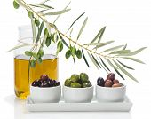 picture of olive trees  - different varieties of olives marinated in white bowls and twig of olive tree jar of olive oil isolated on white - JPG