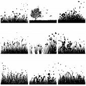 picture of flying-insect  - Vector grass silhouette set - JPG