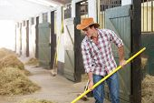 picture of feeding horse  - cowboy working in a horse stable - JPG