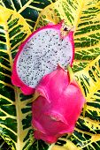 image of flesh  - Dragon fruit  - JPG