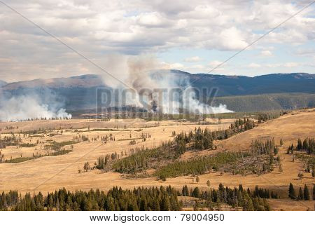 Fire In Yellowstone Park