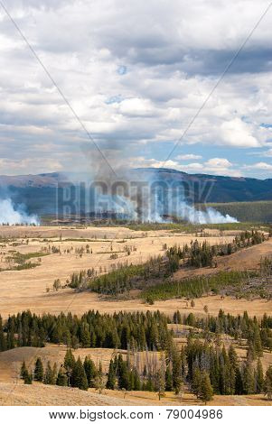 Sporadic Forest Fires In Yellowstone Park