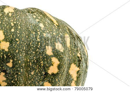 Background Macro Texture Of Outside Surface Of Kent Pumpkin With Copyspace