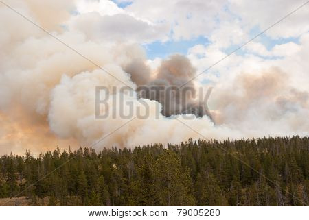 Flames Dance In Fire Clouds Over Yellowstone Park