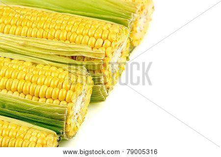Macro Background Texture Of Tasty, Juicy Corn