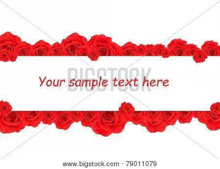 Beautiful rose flowers and card with space for your text isolated on white