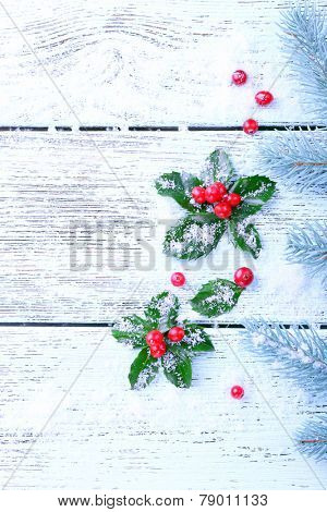 European Holly (Ilex aquifolium) with berries and fir tree, on wooden background