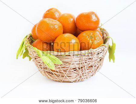 Tangerine Basket Mandarin