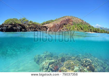 Makena Reef