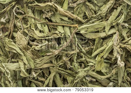 stevia dried leaves background - natural sweetener, sugar substitute