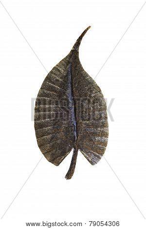 Metal Leaf On White