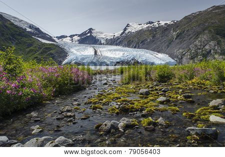 Wide Stream Flowing Into Portage Glacier Lake