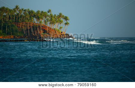 Coast with palm trees and sea with waves breaking on the rocks