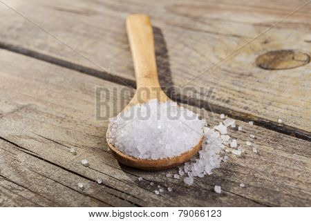 Salt Spoon