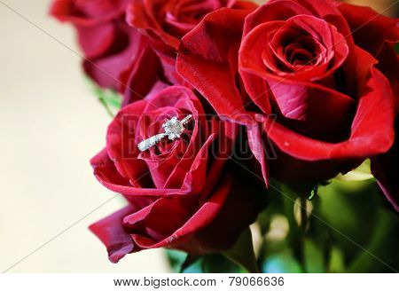 Red Rose With Diamond Engagement Ring.