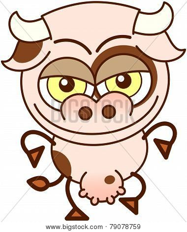 Cute cow in mischievous mood