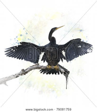 Digital Painting Of Anhinga Bird Perching