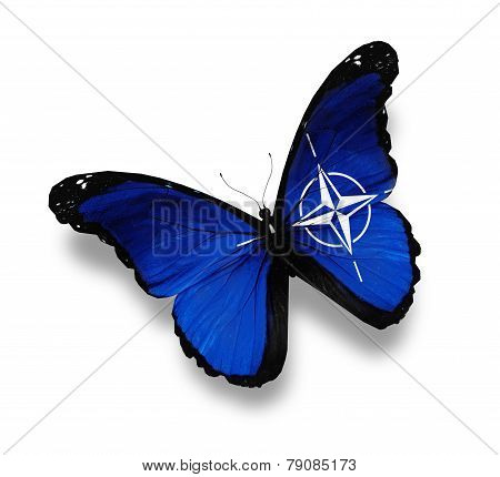 Flag Of Nato Butterfly, Isolated On White