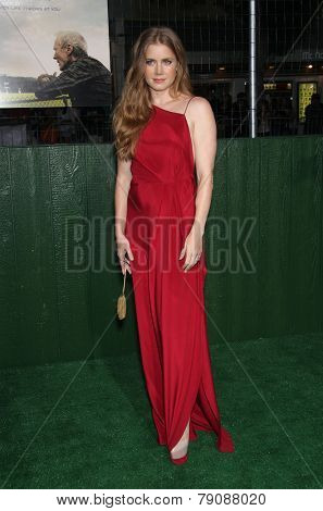 LOS ANGELES - SEP 19:  Amy Adams arrives to